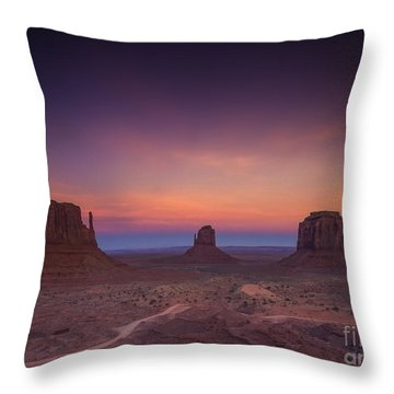 The Last Of Daylight Throw Pillow