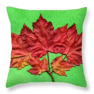 The Last Of Fall Throw Pillow