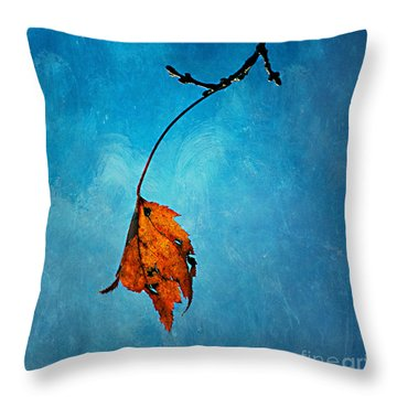 The Last One Throw Pillow by Darren Fisher