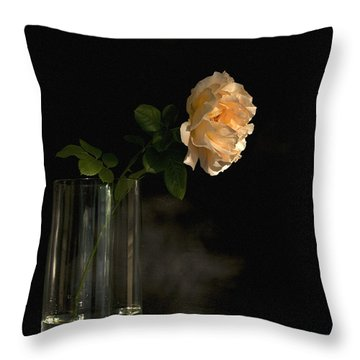 The Last Rose Of Summer Throw Pillow by Theresa Tahara