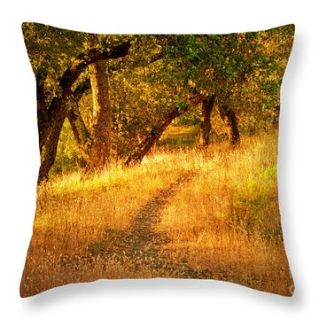 The Late Afternoon Walk Throw Pillow