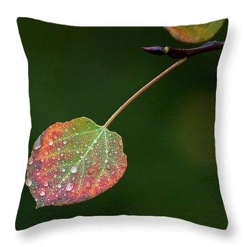 The Latter Rain  Throw Pillow by Jim Garrison