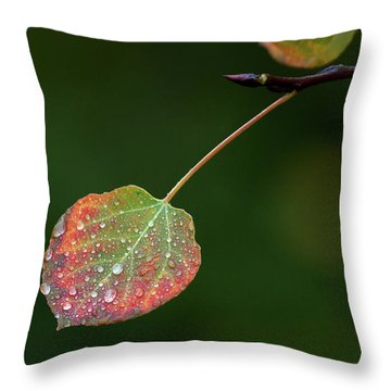 The Latter Rain  Throw Pillow