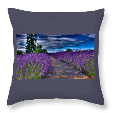 Throw Pillow featuring the photograph The Lavender Field by Thom Zehrfeld