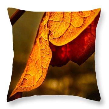 The Leaf Across The River Throw Pillow by Bob Orsillo
