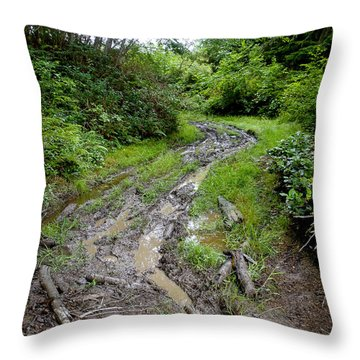 The Ledge Point Trail Throw Pillow
