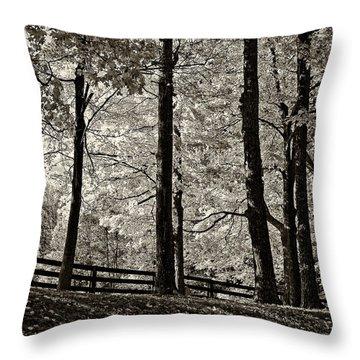 The Less Traveled Sepia Throw Pillow by Steve Harrington