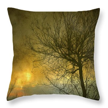 The Light Escapes Through The Clouds Throw Pillow by Guido Montanes Castillo