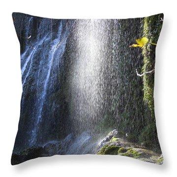 The Light Fall Throw Pillow