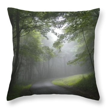 Throw Pillow featuring the photograph The Light Leading Home 2 by Diannah Lynch