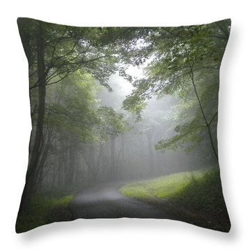 The Light Leading Home  Throw Pillow by Diannah Lynch