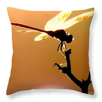 The Light Of Flight Upon The Mosquito Hawk At The Mississippi River In New Orleans Louisiana Throw Pillow by Michael Hoard