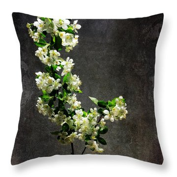 The Light Season Throw Pillow