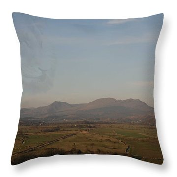 Throw Pillow featuring the photograph The Lion by Christopher Rowlands