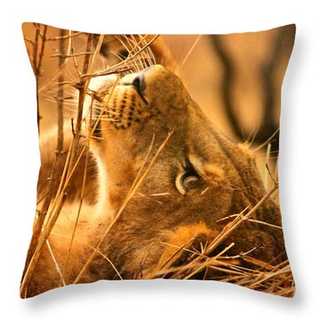 The Lion Muse Throw Pillow