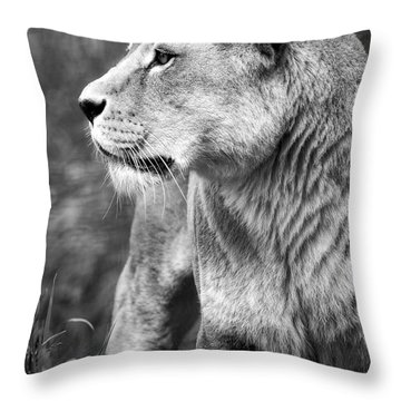 The Lioness Throw Pillow