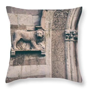 The Lion's Den.. Throw Pillow by A Rey