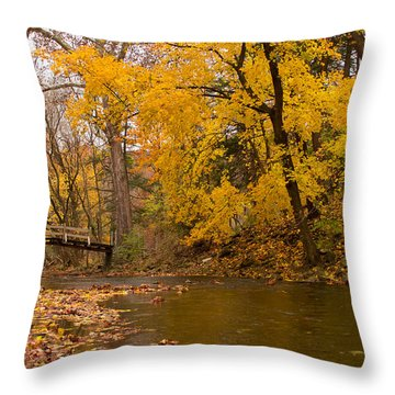The Little Bridge Over Valley Creek Throw Pillow by Rima Biswas