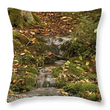 The Little Brook That Could Throw Pillow