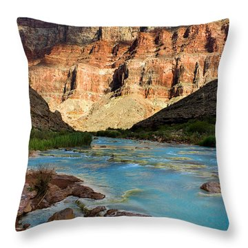 The Little Colorado  Throw Pillow