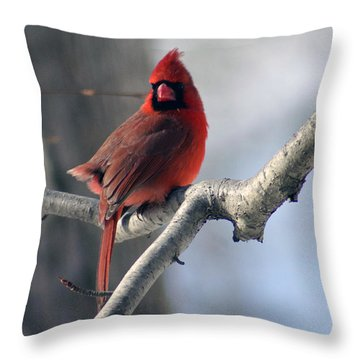 The Little Red Guy Throw Pillow