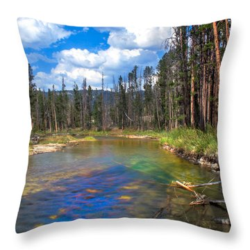 The Little Redfish Creek Throw Pillow by Robert Bales