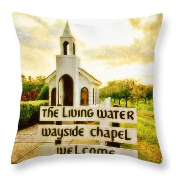 The Living Water Wayside Chapel Throw Pillow by Scott Pellegrin