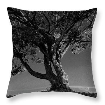 The Lone Tree Black And White Throw Pillow