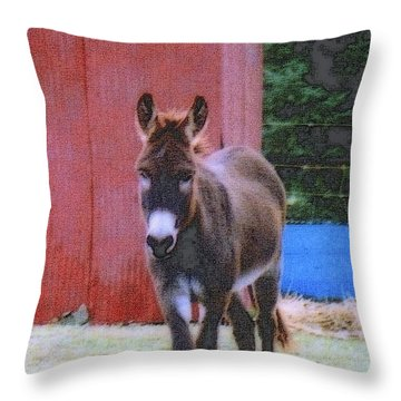 The Lonely Donkey Throw Pillow by Kay Novy