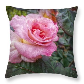 The Lonely One Throw Pillow by Linda Unger