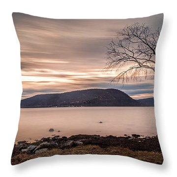Throw Pillow featuring the photograph The Lonely Tree by Anthony Fields