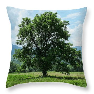 Throw Pillow featuring the photograph The Lonely Tree by Victor Montgomery