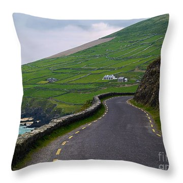 The Long And Winding Road Throw Pillow by Patricia Griffin Brett
