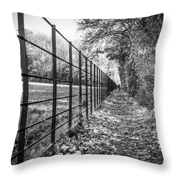 The Long Footpath Throw Pillow
