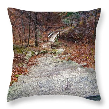 The Long Lonely Trail... Throw Pillow