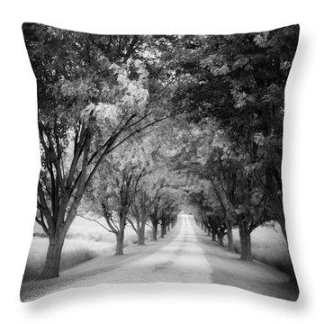 Driveway Throw Pillows