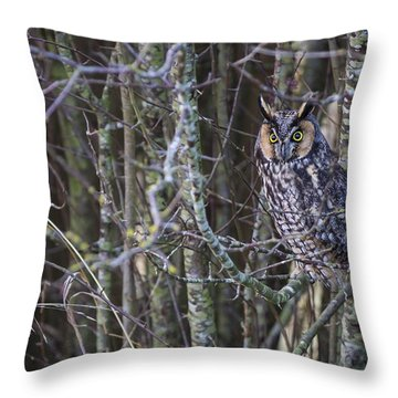 The Look Of Surprise Throw Pillow