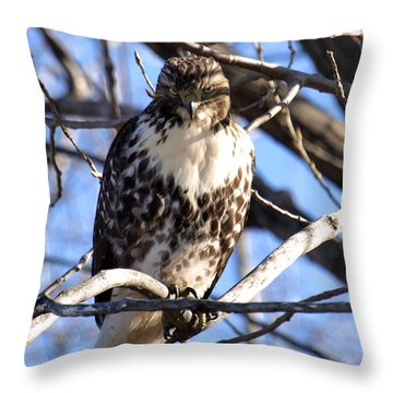 The Look Says It All Throw Pillow by Thomas Young