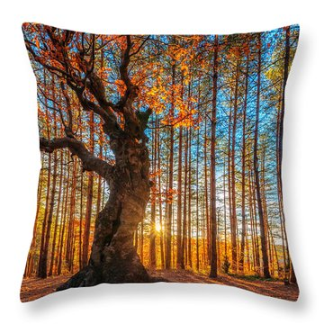 The Lord Of The Trees Throw Pillow