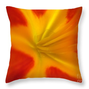 The Lords Canvas Throw Pillow by Jennifer E Doll