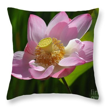The Lotus Throw Pillow by Vivian Christopher