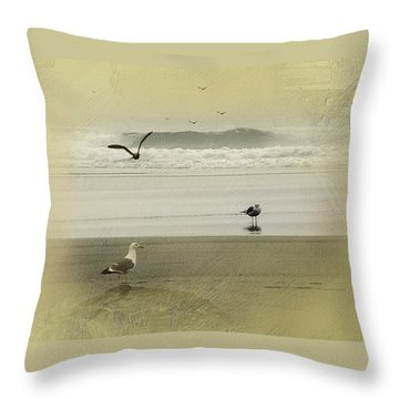 The Love Triangle Throw Pillow by Diane Schuster