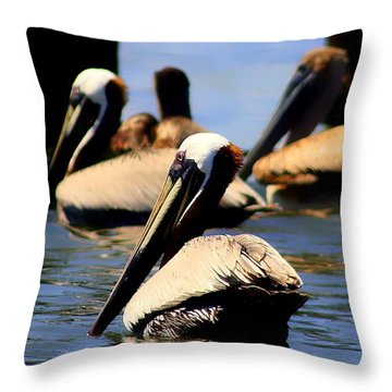 The Lovely Pelican  Throw Pillow