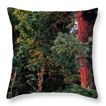 Throw Pillow featuring the photograph The Magic Hour by Natalie Ortiz