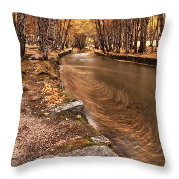 The Magic Of Fall Throw Pillow