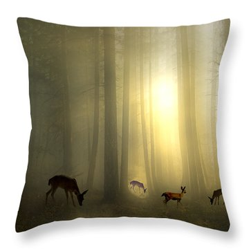 The Magic Of Sunrise Throw Pillow