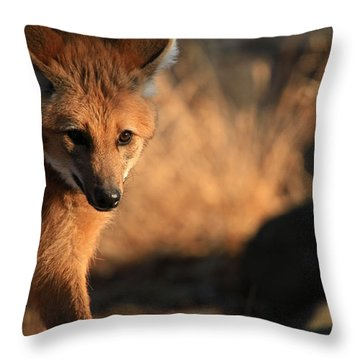 The Maned Wolf Throw Pillow by Karol Livote