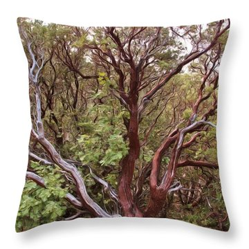 The Manzanita Tree Throw Pillow by Heidi Smith