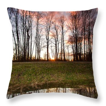 The Marsh Throw Pillow by Eti Reid