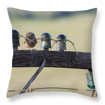 The Master Of Disguise Throw Pillow